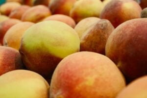 what are the some great fruits you should eat in summer